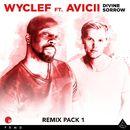 Divine Sorrow Remix Pack 1/Wyclef Jean