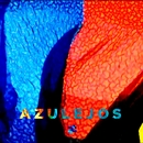 AZULEJOS/Fauve