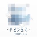 Goodbye (feat. Lyse) [Radio Edit]/Feder