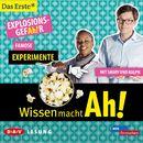 Wissen macht Ah! - Famose Experimente/Christine Gerber, Manuela Kalupke, Doris Mendlewitsch