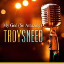 My God (So Amazing)/Troy Sneed