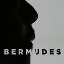 BERMUDES/FAUVE