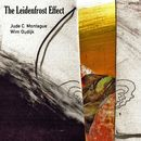 The Leidenfrost Effect/Jude Cowan Montague