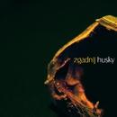 Zgadnij/Husky