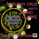 Some Like It High Riddm - Anthony Cruz Meets Bionic Clarke/Some Like It High Riddm - Anthony Cruz Meets Bionic Clarke