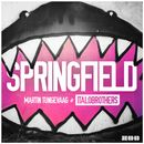 Springfield (Video Edit)/Martin Tungevaag