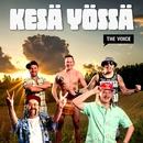 Kesä yössä/Brädi, Stig, Setä Tamu, Kuningas Pähkinä, Oku Luukkainen ja Millionaire Men