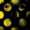 Rei Momo/David Byrne