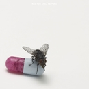 I'm With You/Red Hot Chili Peppers