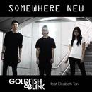 Somewhere New (feat. Elizabeth Tan)/Goldfish & Blink