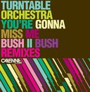 You're Gonna Miss Me/Turntable Orchestra