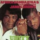 Unity/Afrika Bambaataa & James Brown
