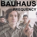 Bauhaus/Frequency