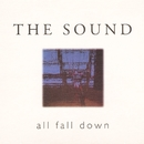 All Fall Down/The Sound