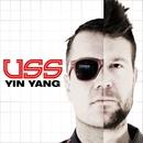 Yin Yang/USS (Ubiquitous Synergy Seeker)