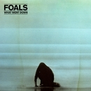 What Went Down (Deluxe)/Foals