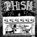Junta/Phish