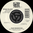 Your Imagination / Your Imagination [A Cappella] [Digital 45]/Brian Wilson