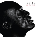 Do You Ever/Seal