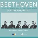Beethoven : Complete String Quintets/Endellion String Quartet