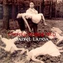 Chcíply Dobrý Víly/Daniel Landa