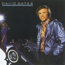Falling In Love Again/David Gates
