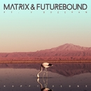 Happy Alone (feat. V. Bozeman)/Matrix & Futurebound