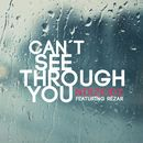 Can't See Through You/NOIZKIDZ