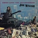 There Goes The Neighborhood/Joe Walsh