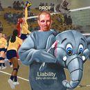Liability/Prof