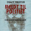 Meldt til politiet (uforkortet)/Eigil V. Knudsen