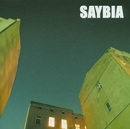 The Second You Sleep/Saybia