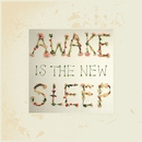 Awake Is the New Sleep (10th Anniversary Deluxe)/Ben Lee