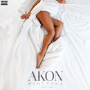 Want Some (feat. DJ Chose)/Akon