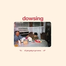 It's Just Going to Get Worse/Dowsing