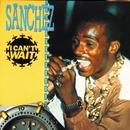 I Can't Wait/Sanchez