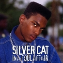In A Foul Affair/Silver Cat