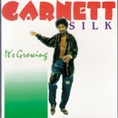 It's Growing/Garnett Silk