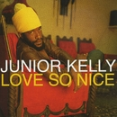 Love So Nice/Junior Kelly