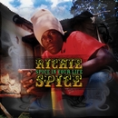 Spice In Your Life/Richie Spice