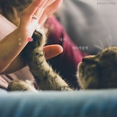 I'll Comfort You (feat. Yongho Yoo)/Mi-Yu