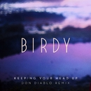 Keeping Your Head Up (Don Diablo Remix) [Radio Edit]/Birdy