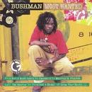 Most Wanted/Bushman