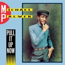 Pull It Up Now/Michael Palmer