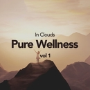 Pure Wellness Vol 1/In Clouds
