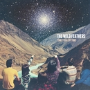 Lonely Is A Lifetime/The Wild Feathers