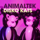 Disko Kats/Animaltek