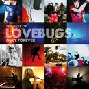 Only Forever - The Best of Lovebugs/Lovebugs