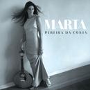 Terra/Marta Pereira da Costa