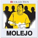 Molejo - iCollection/Grupo Molejo